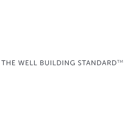 The Well Being Standard Logo